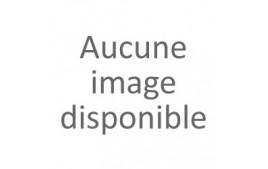 Mignonettes Basilic